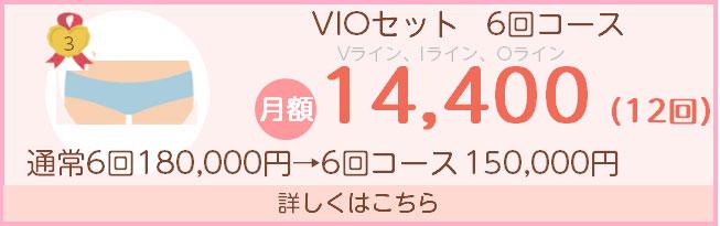 VIO6回コース